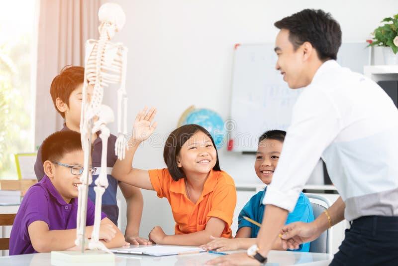 Le professeur asiatique explique une structure de corps humain au petit élève photos libres de droits