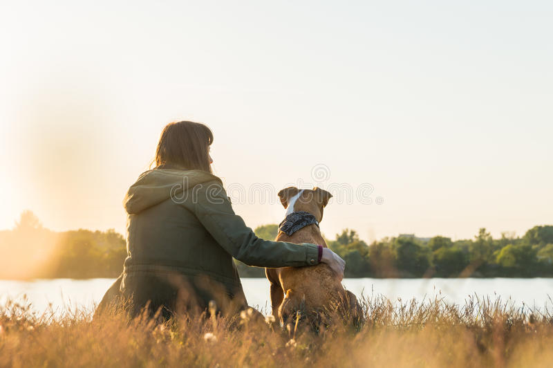 Le propriétaire de chien et son animal familier s'asseyent à la rive au coucher du soleil image stock
