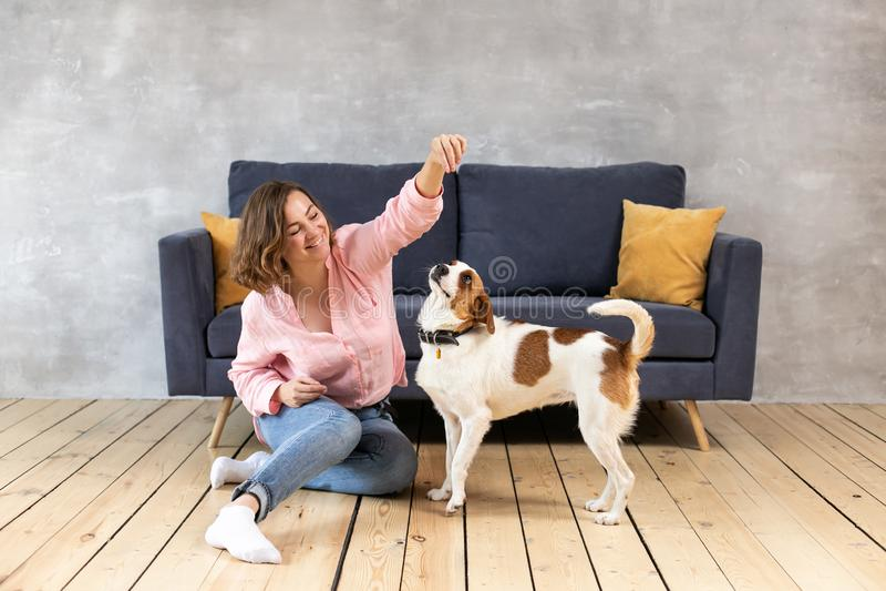 Le propriétaire et son jeu de chien à la maison photographie stock libre de droits