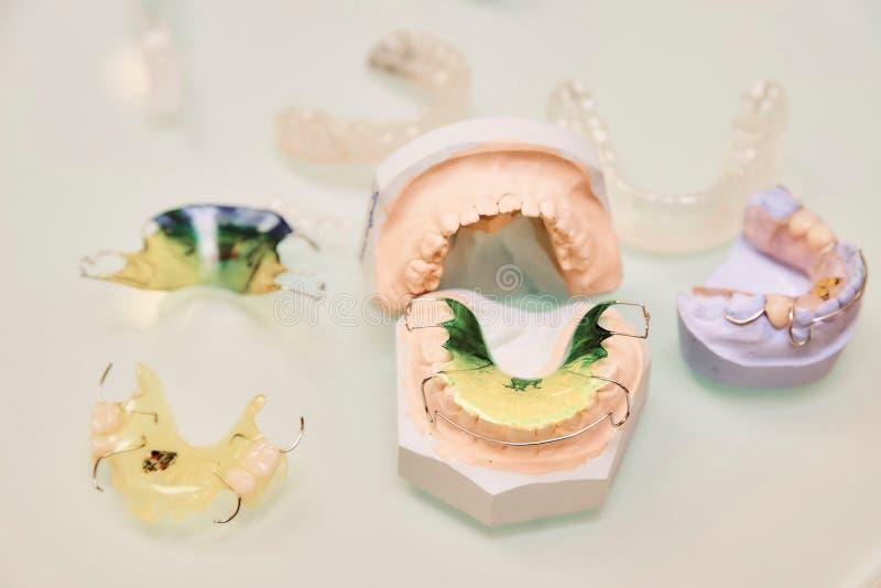 Le protesi dentarie del bambino chiudono sulla vista da sopra su un fondo leggero fotografia stock