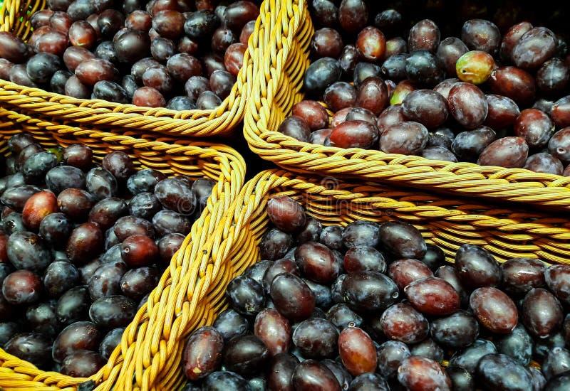 Le prugne fresche sane sono consumate direttamente dall'agricoltura fotografie stock libere da diritti