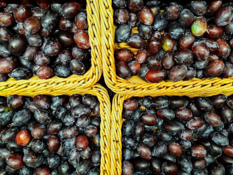 Le prugne fresche sane sono consumate direttamente dall'agricoltura immagine stock