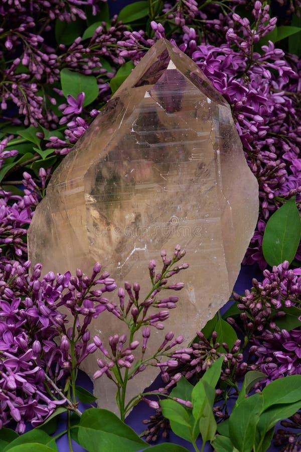 Le quartz citrin naturel ?norme de cath?drale du Br?sil a entour? par la fleur lilas pourpre photos libres de droits