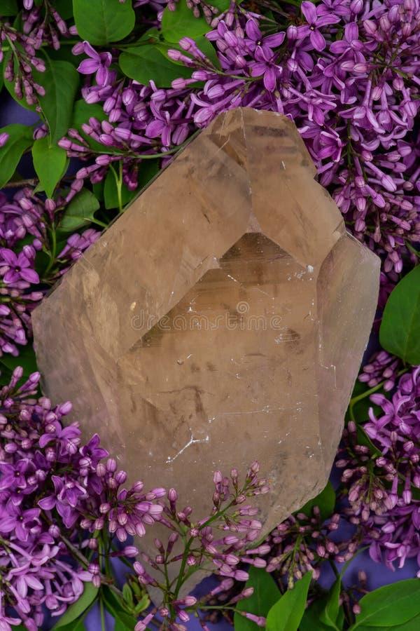 Le quartz citrin naturel ?norme de cath?drale du Br?sil a entour? par la fleur lilas pourpre image libre de droits
