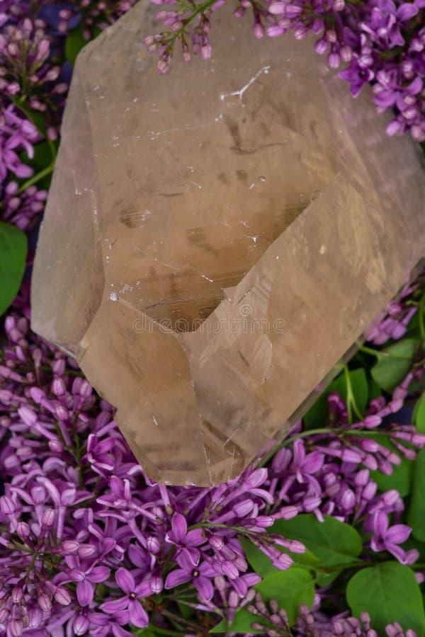 Le quartz citrin naturel ?norme de cath?drale du Br?sil a entour? par la fleur lilas pourpre images stock