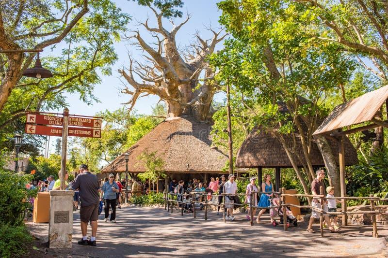 Le règne animal chez Walt Disney World photographie stock libre de droits