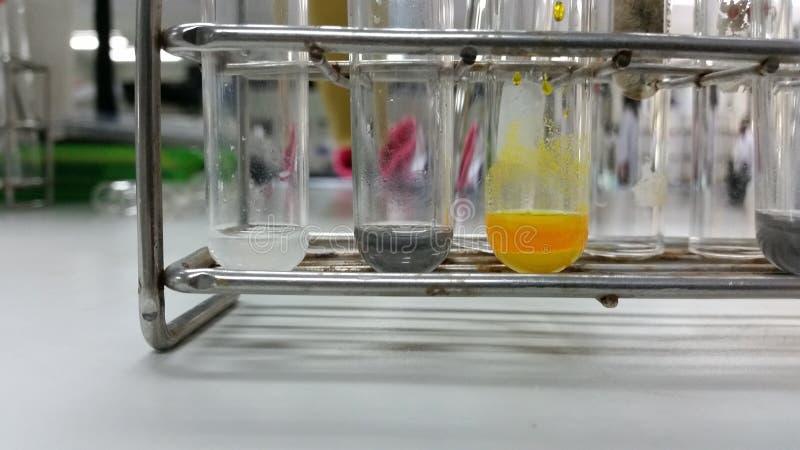 Le réactif chimique dans des tubes à essai photos libres de droits