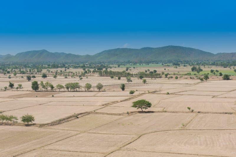 Le réchauffement global, est mort et sol criqué dans la saison aride, vue de photos libres de droits