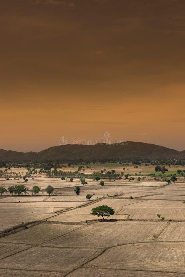 Le réchauffement global, est mort et sol criqué dans la saison aride, vue de image stock