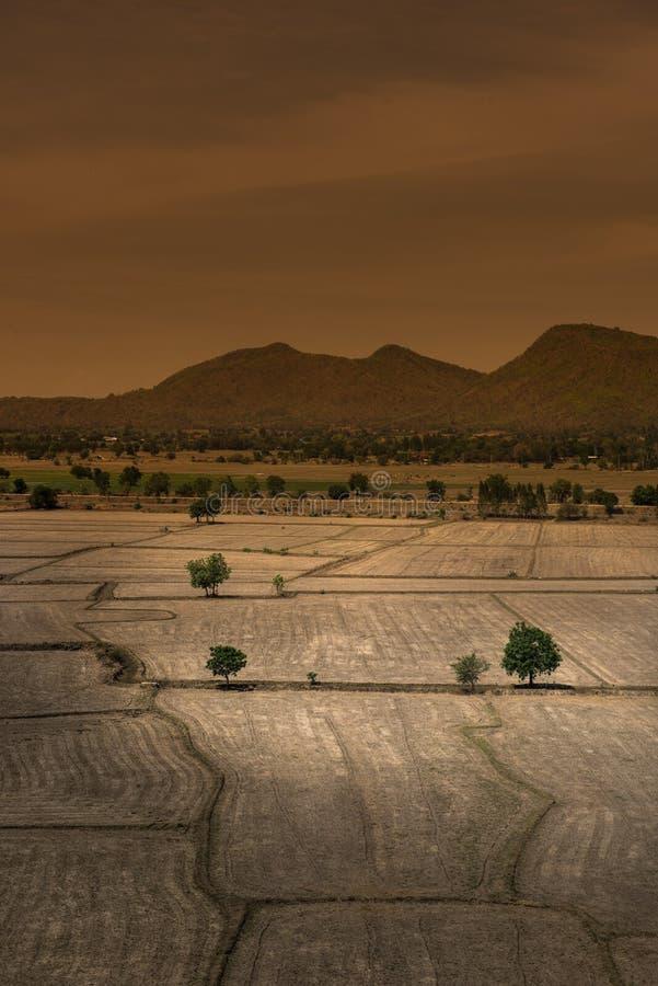 Le réchauffement global, est mort et sol criqué dans la saison aride, vue de photographie stock libre de droits