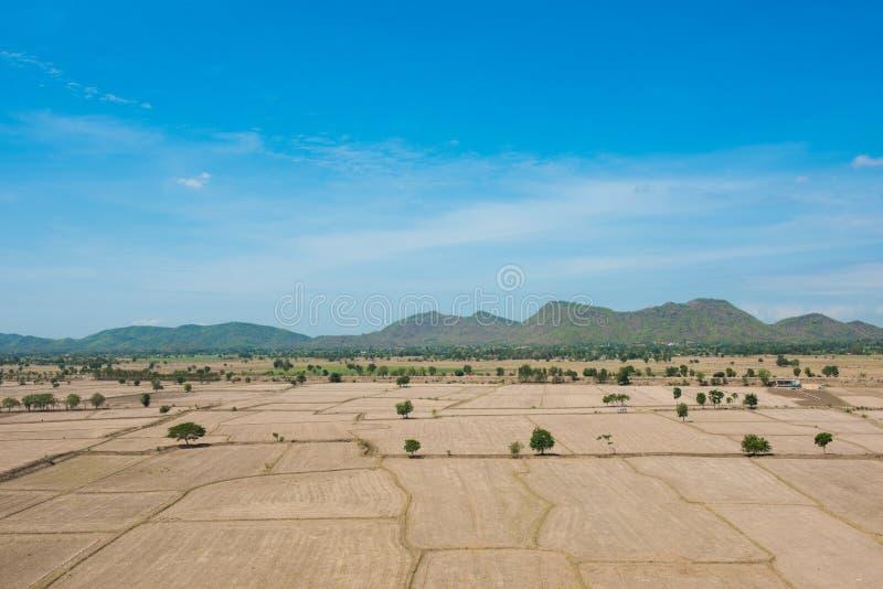Le réchauffement global, est mort et sol criqué dans la saison aride, vue de images libres de droits