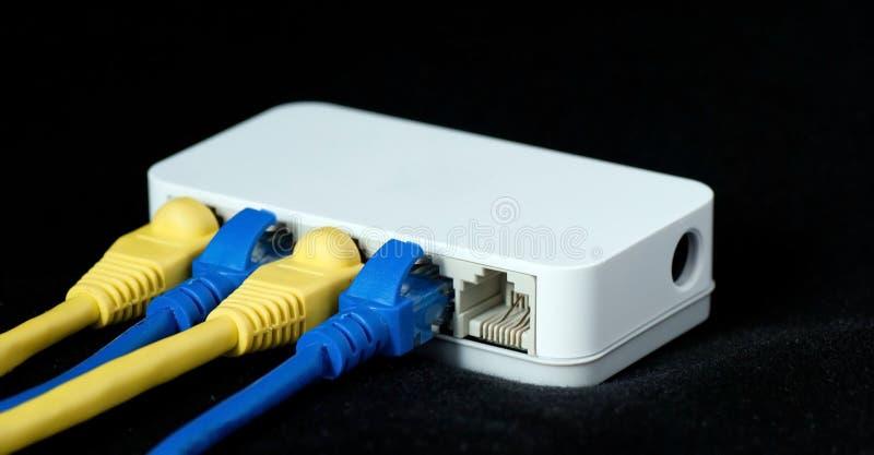 Le réseau câble le RJ45 relié à un commutateur photos libres de droits