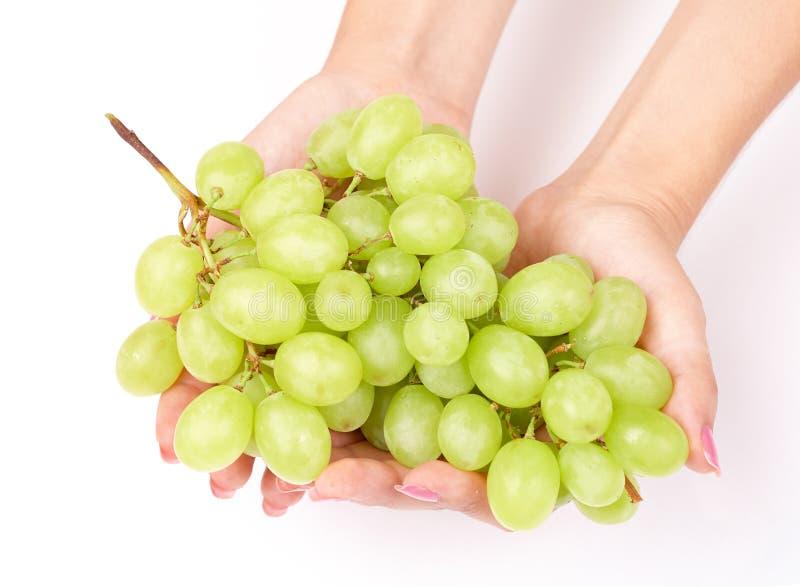 Le raisin chez la femme remet le fond de blanc de plan rapproché photos stock