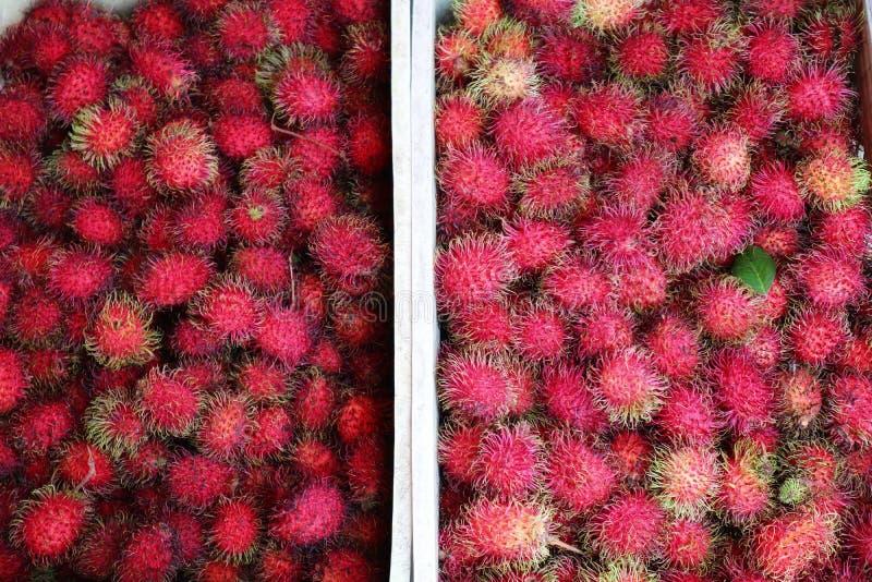 Le ramboutan est un fruit tropical avec la couleur rouge, chair blanche, provenue de l'Indonésie photos stock