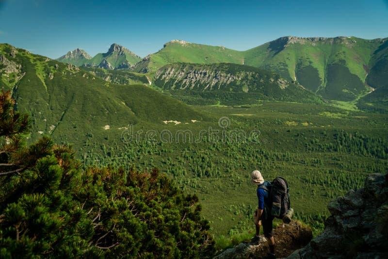 Le randonneur apprécie la vue de la haute vallée de montagne de Tatras photos libres de droits