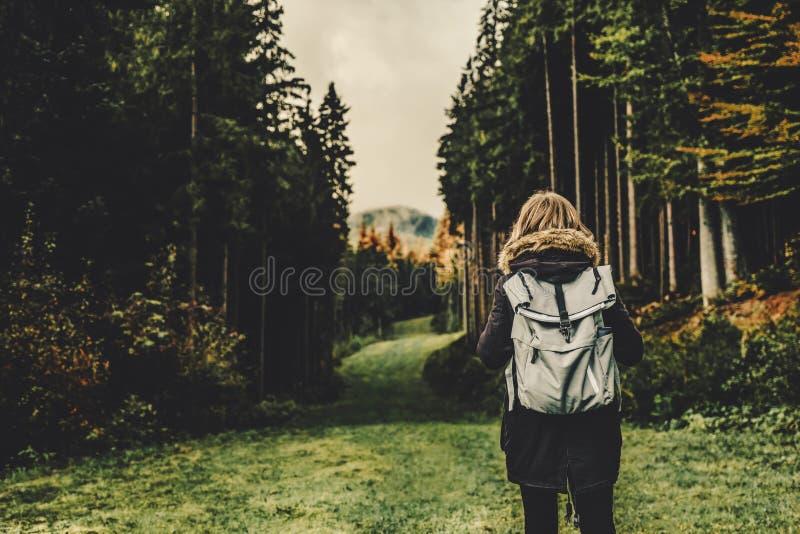 Le randonneur de jeune fille aux montagnes de forêt aménagent en parc avec le voyage de sac à dos Aventure d'envie de voyager de  photo libre de droits