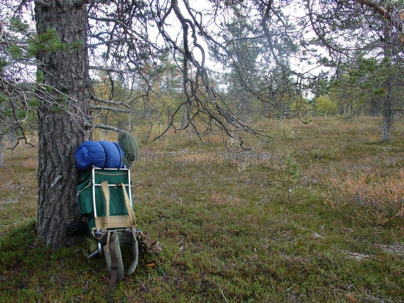 Le randonneur se repose sans sac à dos dans la longue journée photo libre de droits