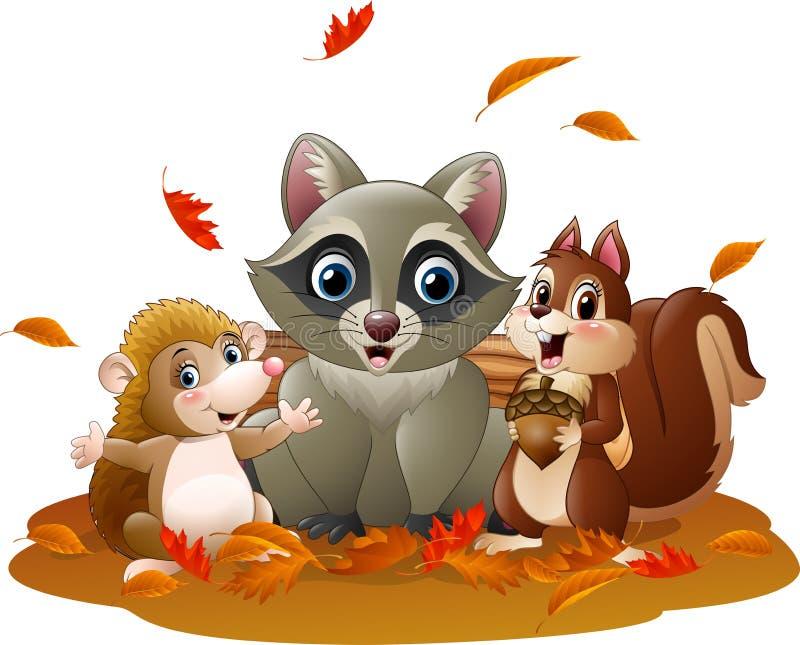 Le raton laveur, le hérisson et l'écureuil drôles de bande dessinée pendant l'automne survivent illustration de vecteur