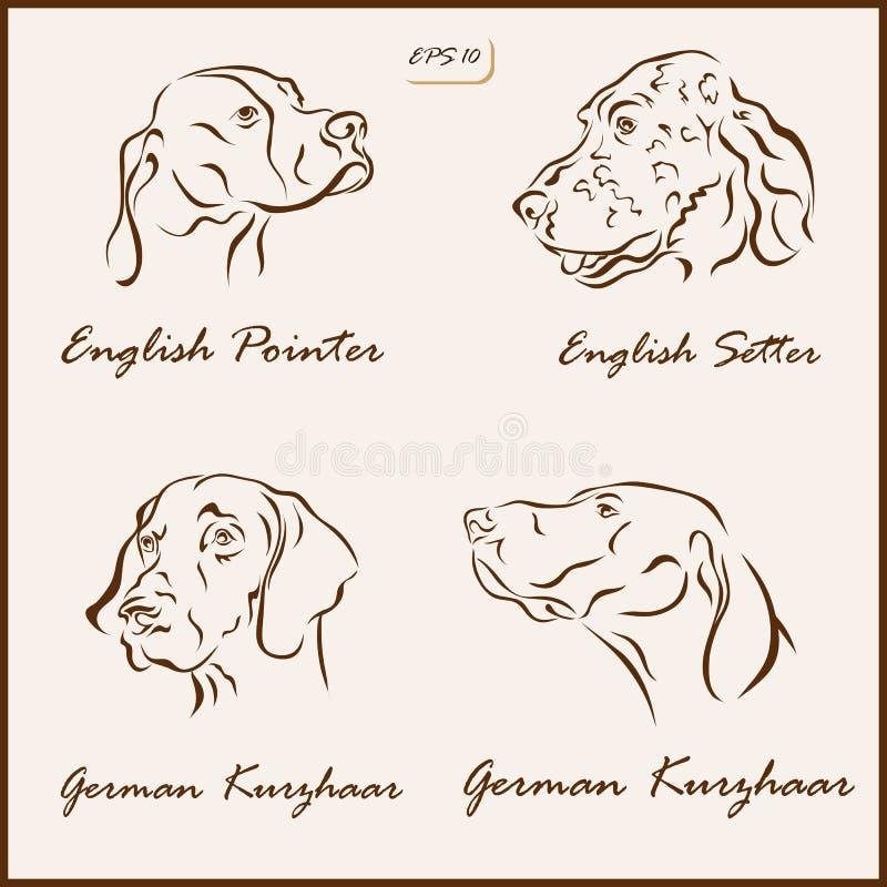 Le razze del cane illustrazione vettoriale