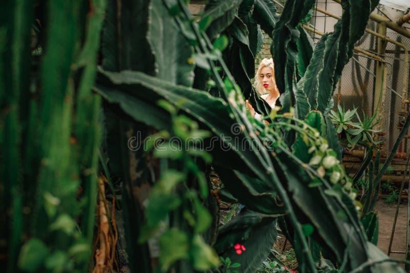 Le regard du beau modèle femelle a attrapé au jardin tropical image stock