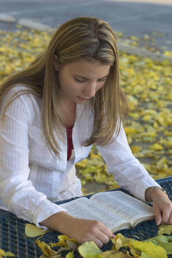 Download Le relevé de femme image stock. Image du bible, fille, reading - 50635