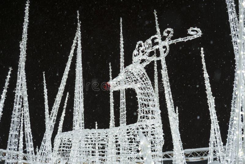 Le renne à enchantent le labyrinthe et le marché de lumière de Noël photos stock