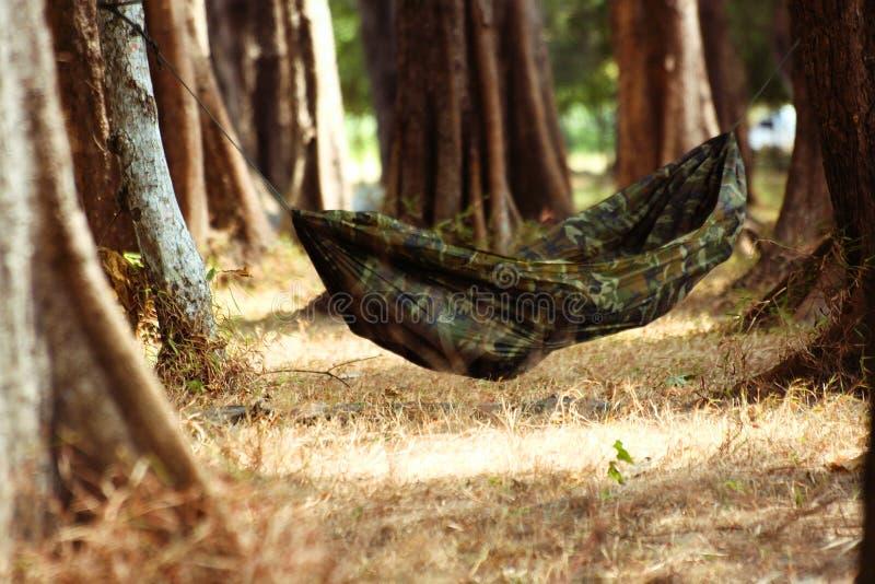 le repos détendent la facilité de repos de vacances photo libre de droits