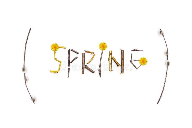 Le ressort de mot est présenté des tiges d'un arbre fleurissant Le concept du ressort de approche Carte de ressort avec des fleur photographie stock libre de droits