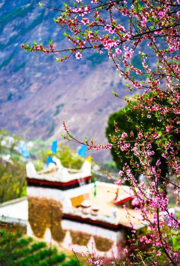 Le ressort du village tibétain dans Danba photographie stock
