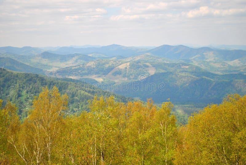 Le ressort est venu tôt dans les montagnes d'Altai photos libres de droits