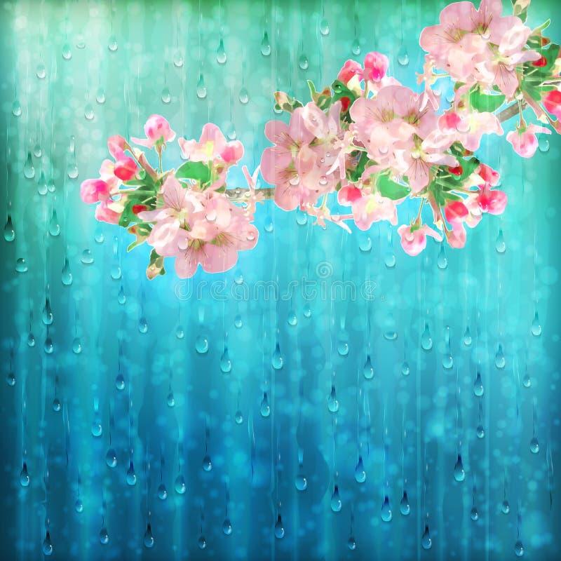 Le ressort fleurit le vecteur de pluie illustration libre de droits