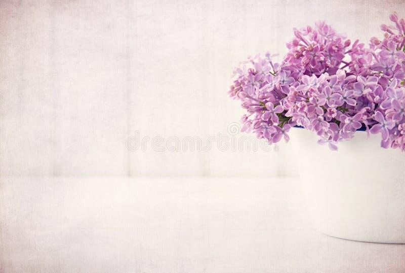 Le ressort lilas pourpre fleurit sur le fond texturisé par vintage photographie stock libre de droits