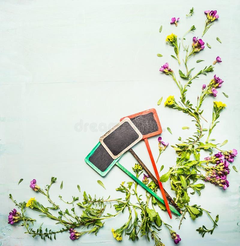 Le ressort ou la plante et les fleurs d 39 t avec le jardin - Ou planter la rhubarbe dans le jardin ...