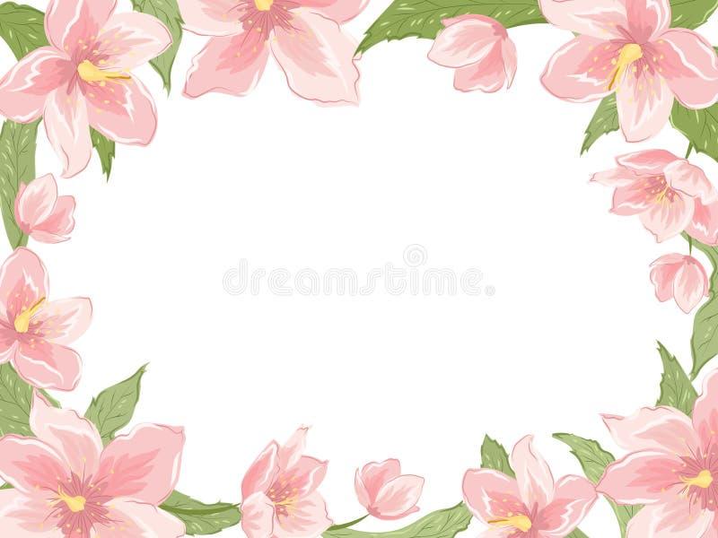 Le ressort rectangulaire de rose de cadre de frontière fleurit le blanc illustration libre de droits
