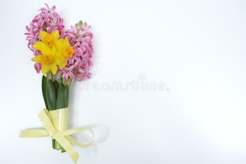 Le ressort rose et jaune fleurit, dimanche de Pâques, l'espace de copie, isolat images stock