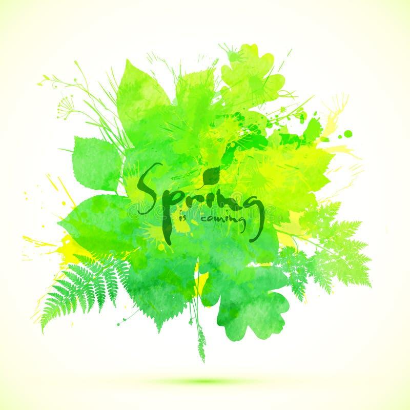 Le ressort vert clair part de la bannière de vecteur illustration libre de droits