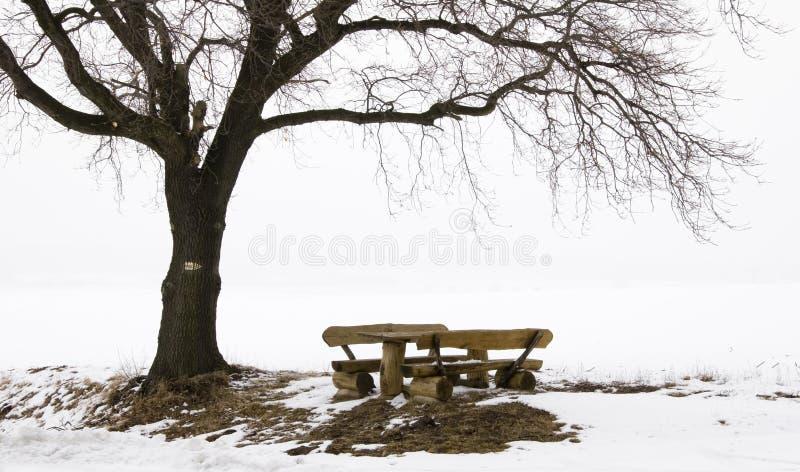 le reste d'horizontal pose l'hiver images libres de droits