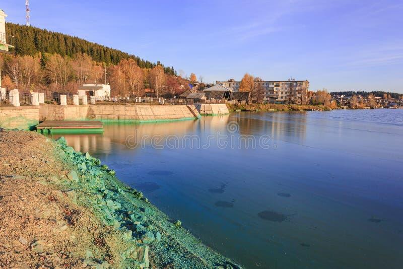 Le rivage d'un étang atteint du cyanobacteria photographie stock libre de droits