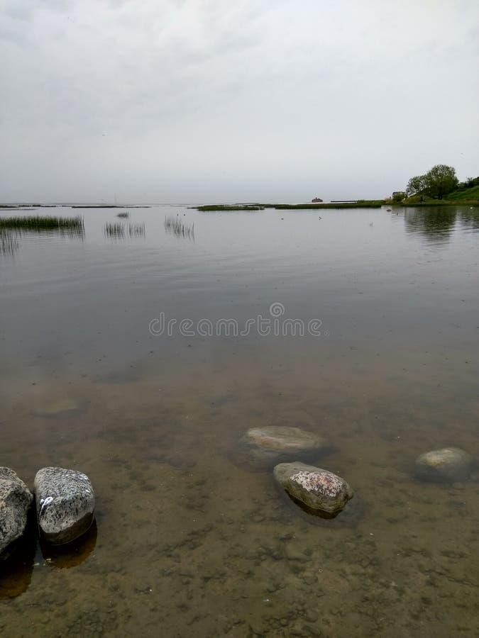 Le rivage de l'étang, l'eau claire photo stock