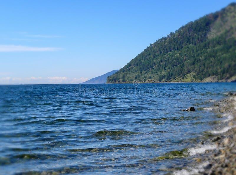Le rivage du lac Baikal Baikal est le lac le plus profond sur la planète, plus grand réservoir naturel d'eau douce photographie stock libre de droits