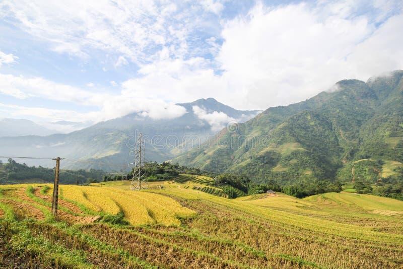 Le riz met en place sur en terrasse de Sapa, secteur de Sapa, Lao Cai Province, Vietnam du nord-ouest image stock