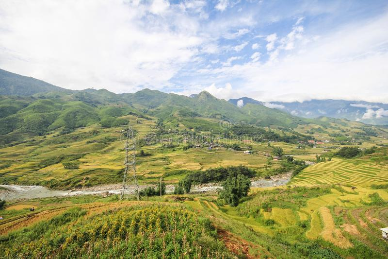 Le riz met en place sur en terrasse de Sapa, secteur de Sapa, Lao Cai Province, Vietnam du nord-ouest photos stock