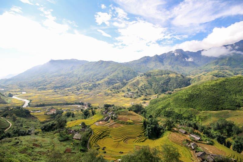 Le riz met en place sur en terrasse de Sapa, secteur de Sapa, Lao Cai Province, Vietnam du nord-ouest photographie stock libre de droits