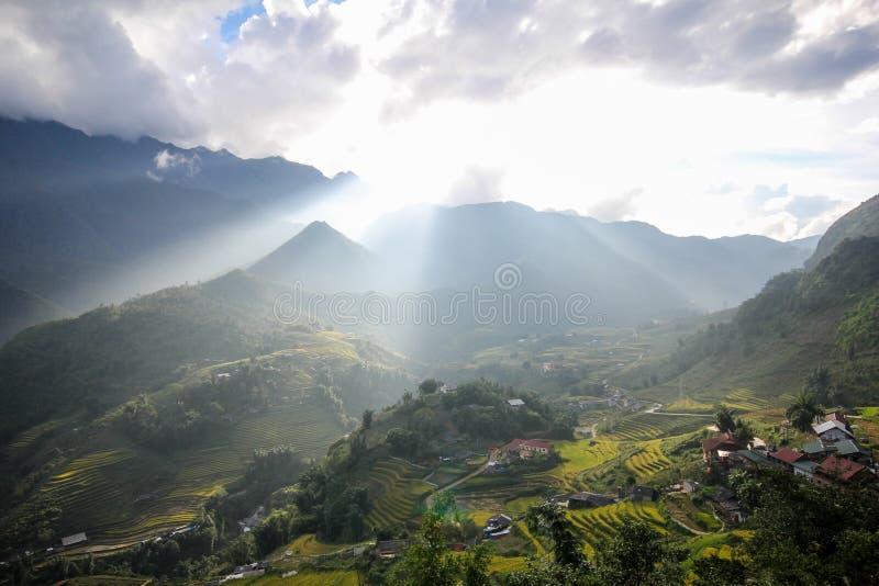 Le riz met en place sur en terrasse de Sapa, secteur de Sapa, Lao Cai Province, Vietnam du nord-ouest photos libres de droits