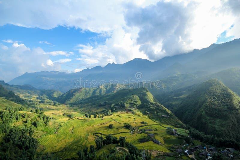 Le riz met en place sur en terrasse de Sapa, secteur de Sapa, Lao Cai Province, Vietnam du nord-ouest photographie stock