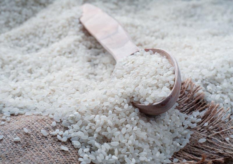 Le riz se trouve sur renvoyer photos libres de droits