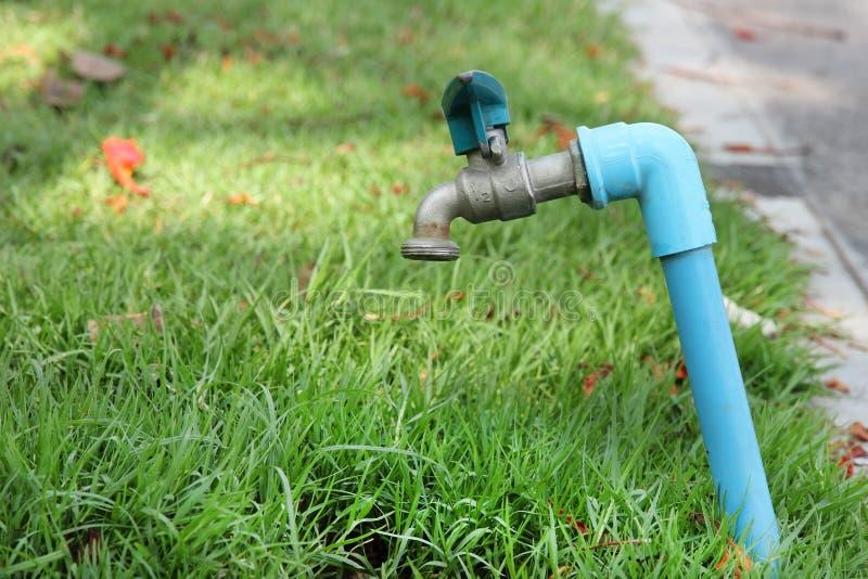 Le robinet sur l'herbe photos stock