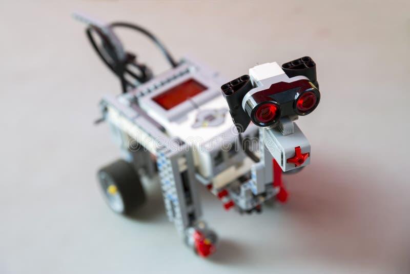 Le robot de jouet du plastique bloque le chien photographie stock libre de droits