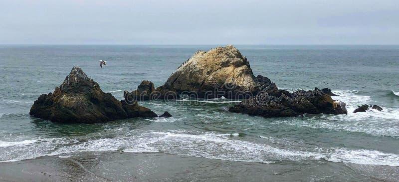 Le rocce nell'oceano Pacifico alle terre concludono il parco nazionale immagine stock libera da diritti