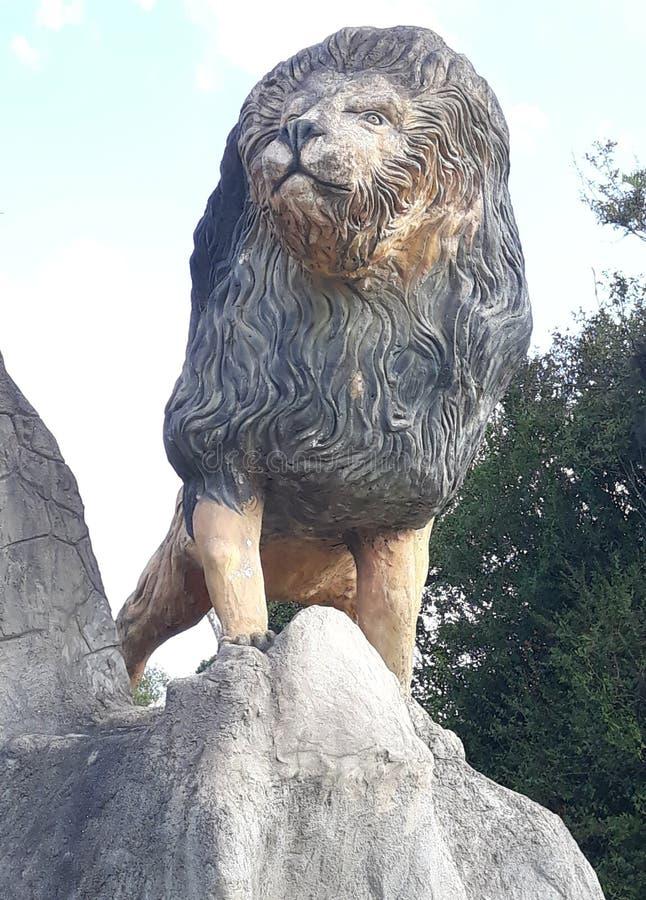 le roi des jungles photo libre de droits